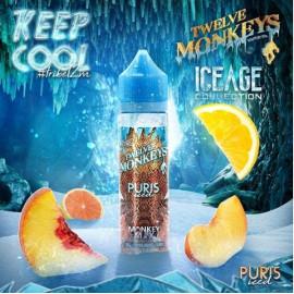 TWELVE MONKEYS - PURIS ICED 50ml