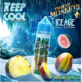 TWELVE MONKEYS - MANGABEYS ICED 50ml
